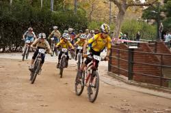 20111113_Pegaso